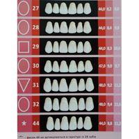 Изображение для категории Гарнитуры зубов