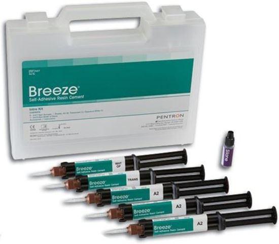 Breeze 7.8г (Бриз) композитный цемент