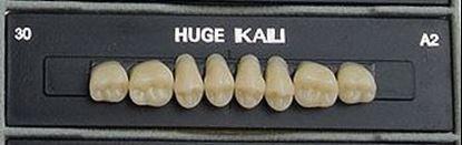 Планки жевательных верхних зубов (задних) Kaili HUGE DENT