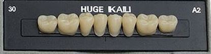 Планки жевательных нижних зубов (задних) Kaili HUGE DENT